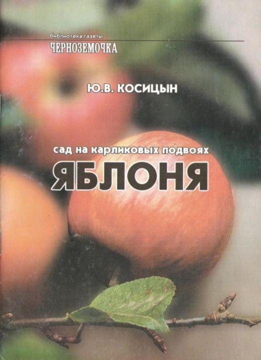 Aromatnaja-grusha