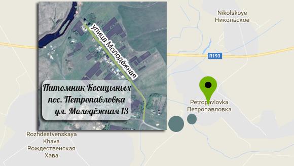 карта проезда к Питомнику Косициных